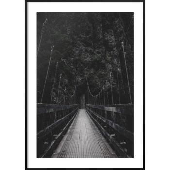 plakat most w dżungli