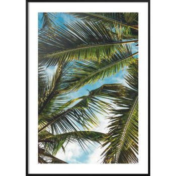 motyw palmy