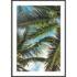 Plakat Liście palmowe