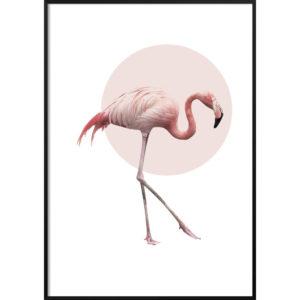 Plakat Różowy Flaming NO.2