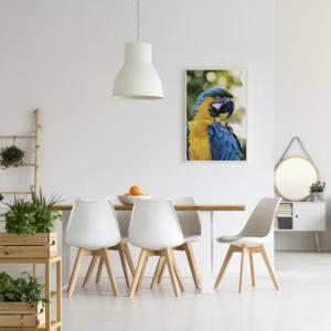 Plakat Papauga w jadalni