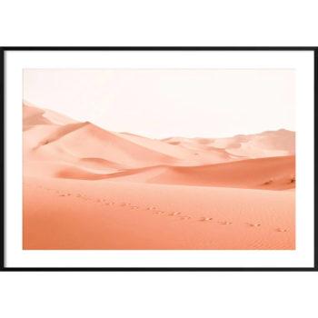 zdjęcia pustyni