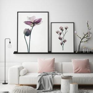 Plakat Lotos; Magnolia
