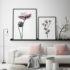 storczyk i magnolia