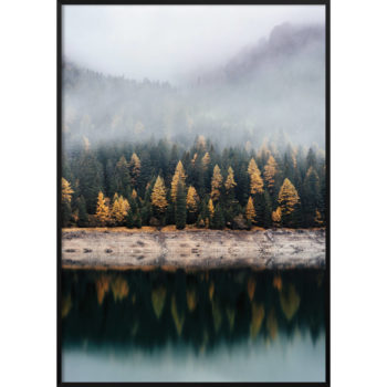 las i jezioro plakat