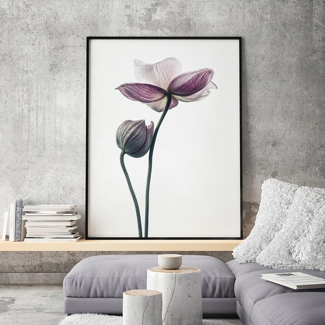 plakat sklep towar  lotos