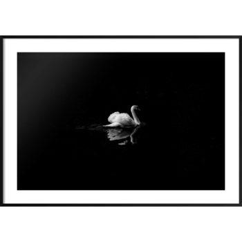 elegancki plakat do minimalistycznego wnętrza