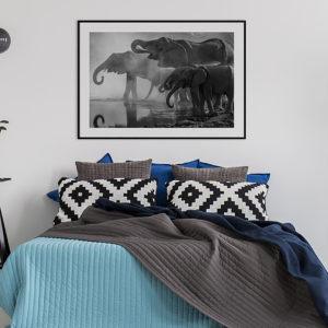 Plakat Słonie przy wodopoju w sypialni