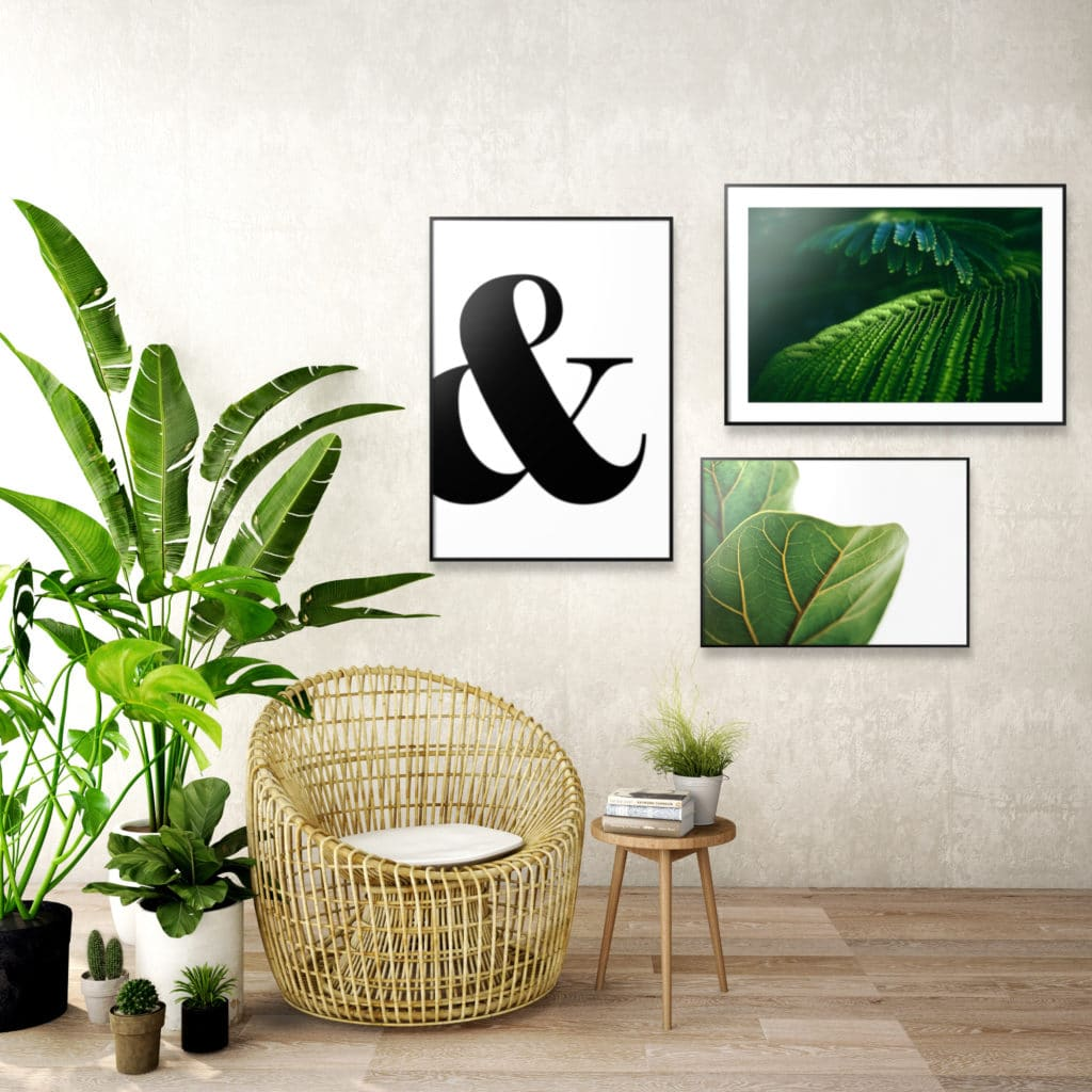 Plakaty do stworzenia Urban jungle
