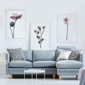 Plakat Lotos, Magnolia, Kwiat Lotosu