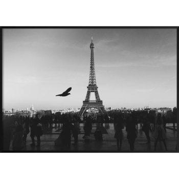 wyjątkowe zdjęcia paryża