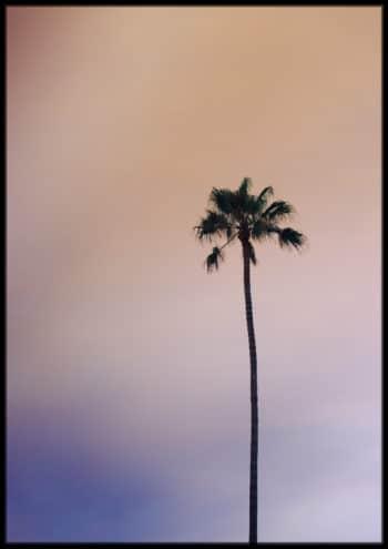 motyw palmy we wnetrzach
