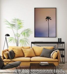 palmy w salonie