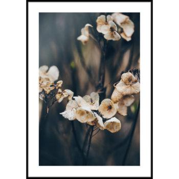 plakat z kwiatami beż