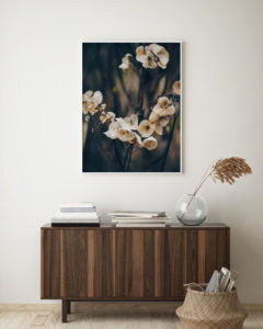 Plakat Kwiaty późnego lata na ścianie