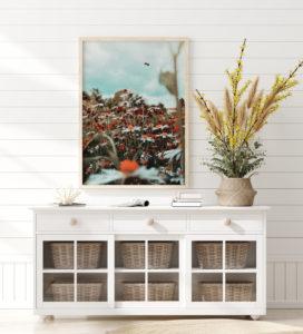 Plakat Łąka kwiatów na ścianie