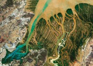Delta afrykańskiej rzeki
